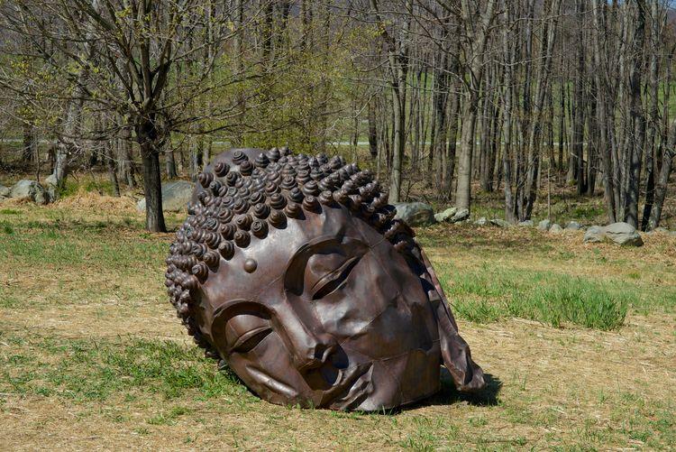 zhang huang buddha head