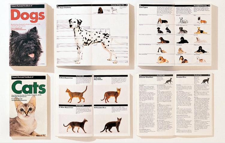 Massimo Vignelli grid graphic design Cats Dogs guidebook