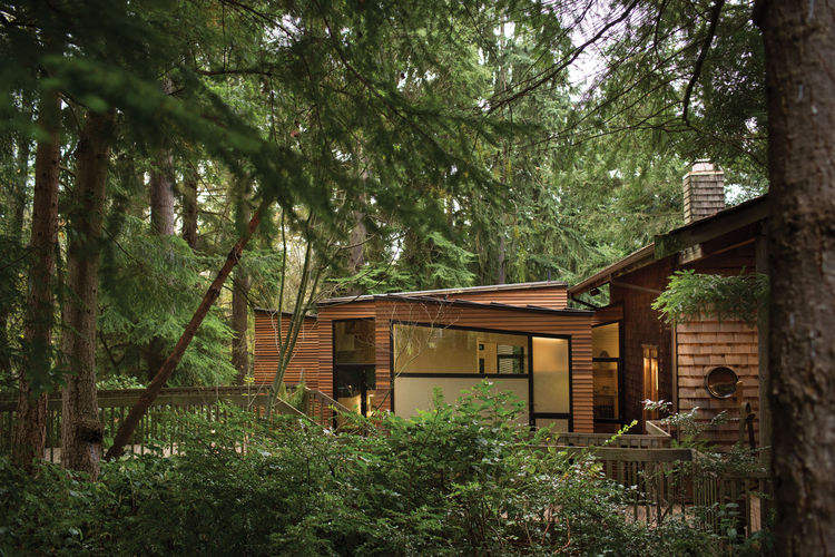 Modern wood home with large windows in a wooded setting