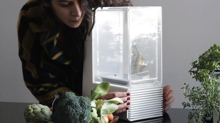 A high-tech new countertop sous vide cooker