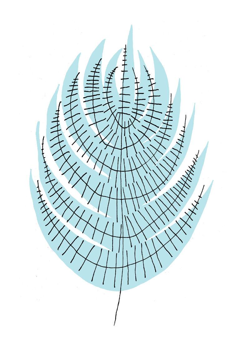 Intricately drawn fern over screen print