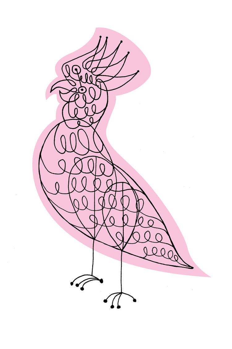 Screen-printed pink bird with hand drawn charcoal line work