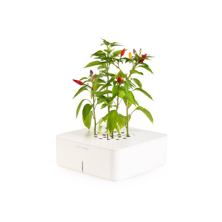 White planter with automatic water dispenser