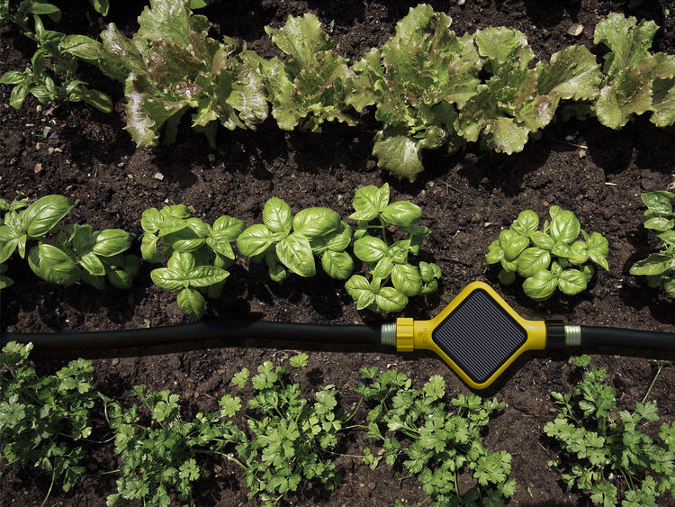Smart gardening system house that automatically irrigates