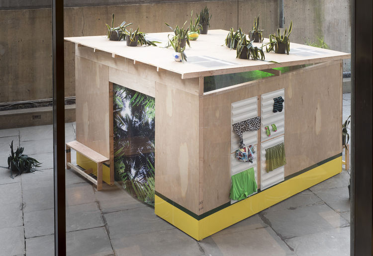 Wooden hut with potted plants and skylights