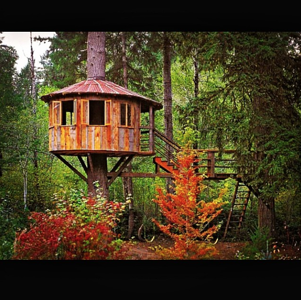 Colorful circular tree house with stairs
