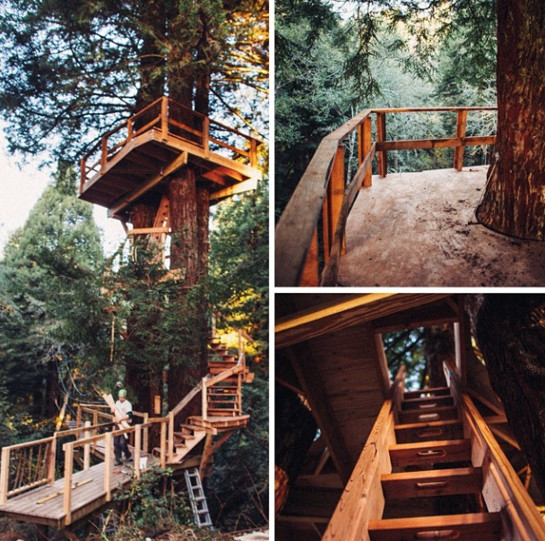 Treehouse stairs and platform under construction