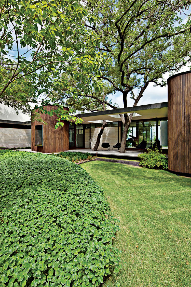 modern landscaping garden south mulch ground cover yard