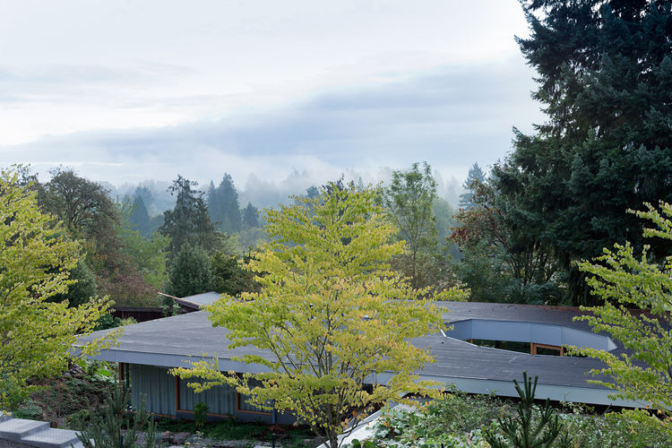 modern roof glass wall courtyard