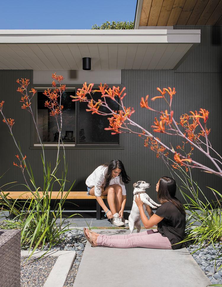 modern outdoor garden courtyard