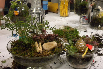 Glass Jar Terrariums Workshop