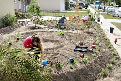edible estates lakewood california regional prototype garden 2 foti michael jennifer in progress planting