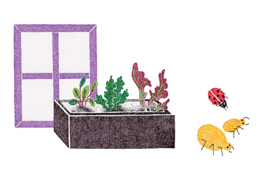 Potting illustration by Malin Rosenqvist