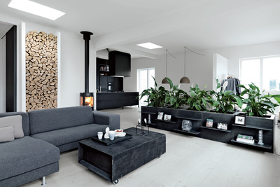 great danes living room