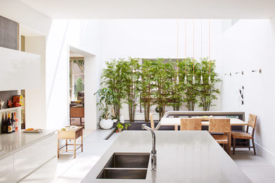 let there be light chicago family renovation atrium kitchen bamboo wall