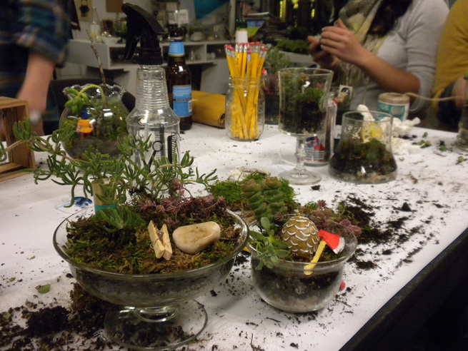 Terrariums, which have recently regained popularity, are quick to put together and addictive once you've done so. (Jordan, Dakota, Tara, and I all walked into the class with dreams of terrariums filling our home and left with plans and dates to go purchas