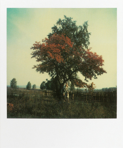 friday polaroid08