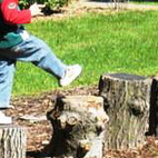 A series of boulders or stumps are great for jumping or stepping. Burying at least one-third of each below ground will ensure that it is stable and won't tip over as someone skips from one stump to another.Image by Steve Olson of the University of Minnesota Arboretum.