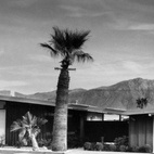 Twin Palms by William Krisel.