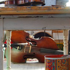 A table in Clinton's workshop frames a cello.  Photo by: Bradford Shellhammer