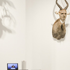 Claire Oliver at Art Miami, 2009.  Courtesy of � Andy Freeberg all rights reserved.