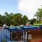 """""""In the beginning I really wanted the container to be off the grid but solar is still very expensive in San Antonio, especially for small spaces,"""" says Hill. """"The green roof was an element that I had not thought of at the beginning, but as it turns out saves me more money on air-conditioning than the solar would have, and is a lot prettier.""""  Photo by: Chris Cooper"""