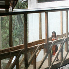 """Angled pine beams help support the bridge, and reference the diagonal lines of the 1,300-square-foot two-story main house, which was built in 2000. """"The irregularity of the site allowed us to connect the addition to the second floor of the house, where the main room is,"""" says Cano. Photo courtesy T3arc"""