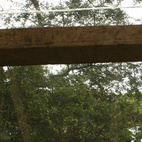 Cano and the family wanted the bridge to be as much a part of the natural surroundings as possible. Photo courtesy T3arc