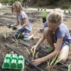 Ingrid and Jane get to work planting seedlings.  Photo by: Catherine Ledner