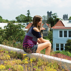 Eliza Pink takes in the view from her perch atop the green roof atop a Washington, DC, home, which resident Daniel Pink believes to be the first of its kind in the neighborhood. The family received a subsidy administered by DC Greenworks and funded by the DC Department of the Environment.  Photo by Eli Meir Kaplan. Courtesy of © 2012 Eli Meir Kaplan Photography.  This originally appeared in Modern Bright Family Home Renovation in Washington, DC.