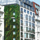 London's Athenaeum Hotel near Hyde Park features a side living wall designed by well, you guessed it, Patrick Blanc. (Pin).