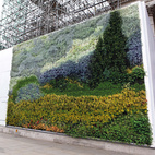 In 2011, The National Gallery, London honored the Dutch post-Impressionist painter Vincent van Gogh with this living wall selectively covered with over 8,000 plants of 24 different varieties to recreate the artist's painting, A Wheatfield, with Cypresses, which was shown in Trafalgar Square in central London. Via The National Gallery.