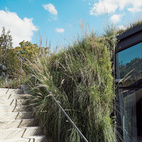 On Austin's outskirts, where urban, industrial, and rural collide, lawyer and science-fiction author Chris Brown's bunker-style home redefines modern city living. Native grasses spill forth from the green roof toward a stairway leading to the main level. Photo by Dave Mead.   Photo by: Dave Mead