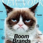 """Anna:NYMAG's Grumpy Cat CoverNew York Magazine's Oct. 7th cover, photographed by Jeff Minton, was the best thing to hit my mailbox in a long long time. The cover story is about the latest brands who have made it HUGE, all of a sudden making 1 billion dollars and the CEO is like 26 years old. Grumpy Cat was the perfect icon to represent today's """"Boom Brands."""""""