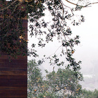 "Just as the barn was extended and cantilevered over the sloped site, so too was the deck off the kitchen, which juts out toward the oak grove. ""There are 125 coast live oaks on the property,"" says Walker. ""They're beautiful trees, so why not exploit that?"" See more ways to use oak in your home.  Photo by: José Mandojana"
