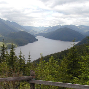 The Cedar River Watershed is a working forest resource in King County for lumber products and drinking water.