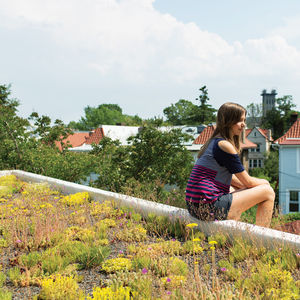 modern sustainable homes with living roofs