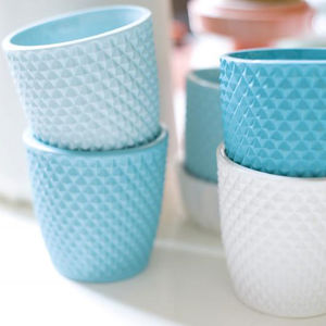 cup s  0