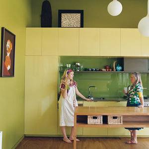 bellemo and cat house kitchen portrait