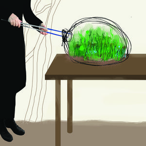 planting petite paula hayes studio surgical tweezers terrarium