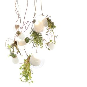 Bocci 38 lamp for indoor gardening
