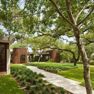 modern houses trees landscape