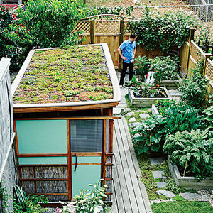 boston pops renovation small space green roofs backyeard workshop