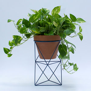 erictrine octahedron exclusive planter 300x300 2