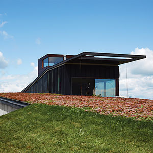 el top rises wisconsin facade sedum green roof