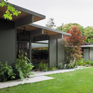 modern backyard garden overhang plants concrete pavers