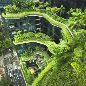 Outdoor green terraces of PARKROYAL tower in Singapore.