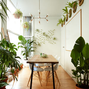 The new Breather and The Sill workspace in Manhattan