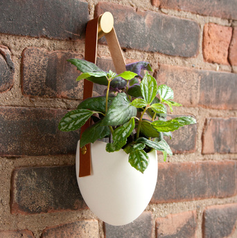 Light + Ladder hanging planter against a brick wall