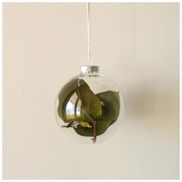 Salal bulb land rich ornament